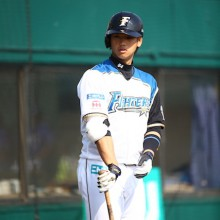 「かわいすぎるスラッガー」谷口雄也の球歴とは