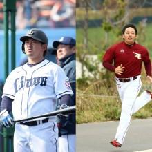 野球界を盛り上げるのは大谷だけじゃない 高卒2年目までの選手たちが熱い!
