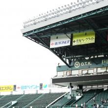 高橋聡が阪神へ移籍 過去のFA加入1年目の成績はどうだった?