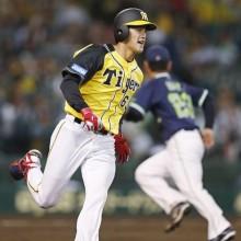 阪神の若きチーム内バトルを盛り上げるドラ6ルーキー・板山祐太郎