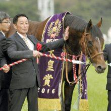 天皇賞馬・モーリスとともに育った男