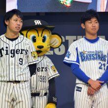 阪神・高山俊(左)、DeNA・今永昇太(右)