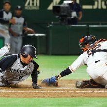 阪神が9回逆転勝ち!広島のマジックが消滅 9日のプロ野球まとめ