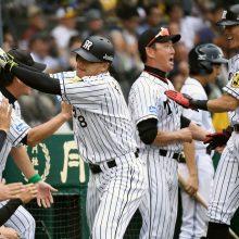 阪神、完封勝ちでファイナルへ王手 メッセ6回零封の快投、福留がV弾!