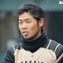 日本ハム近藤、3打点&打率4割キープ 上沢は6回1安打無失点の快投