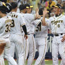 阪神がサヨナラで乱打戦を制す!金本監督「久々に投手陣を打線がカバー」
