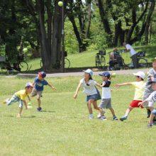 西武が公園情報アプリとコラボ!「キャッチボール可能な公園」が検索可能に