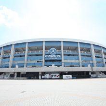 千葉県高野連が代替大会を開催へ「8月に可能な範囲で」