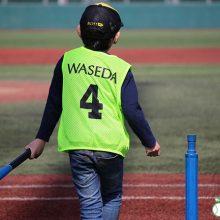 「ボールとバットで自由に遊び、野球に触れてもらう」ため、「安部球場『あそび場』開放2019春」