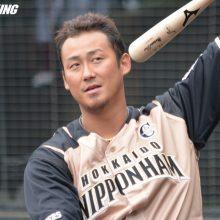 日本ハムが大勝、中田3ラン含む4打点 阪神は新外国人ガンケルが7失点