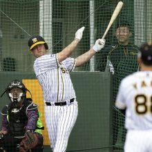 """阪神・サンズがファーム戦で来日""""初ヒット"""" 「一塁」で一軍昇格模索か"""