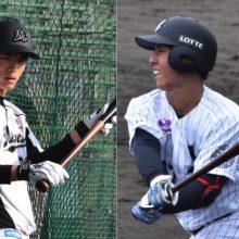 シーズンの大半を一軍で過ごす 1年前は育成選手だったロッテ茶谷と和田