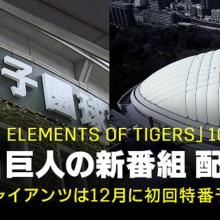 阪神と巨人の新番組がDAZNで配信! 先陣切って『虎の素顔』が22日からスタート